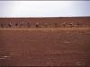 stony-desert-1